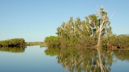 オーストラリアダーウィンの風景
