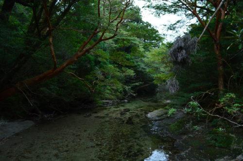屋久島の宮之浦岳