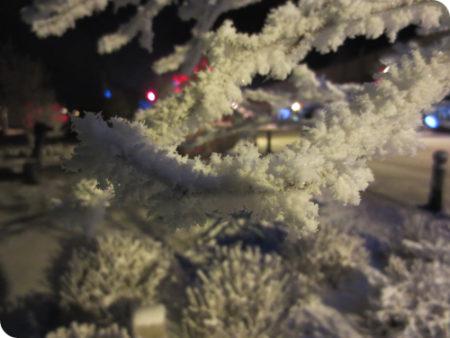 カナダ,ホワイトホース,マイナス30度,極寒