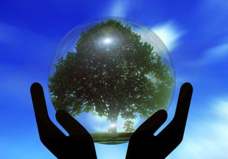 ベジタリアン,地球環境,動物保護