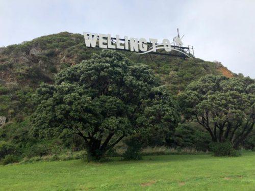 ウェリントンのサイン